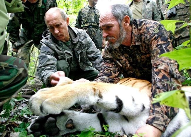 Vladimir Putin propõe lei para proteger animais e plantas de espécies raras