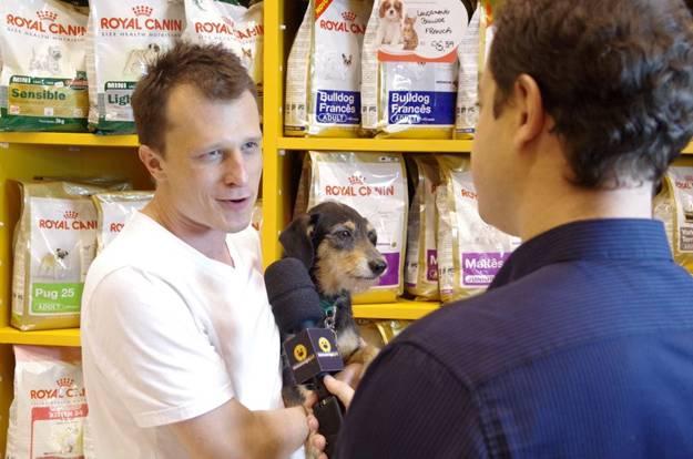 Conheça o Pet Shop dos bichinhos de famosos