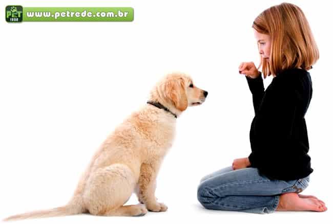cachorro-labrador-filhote-menina-obediencia-treino-adestramento-recompensa-petrede