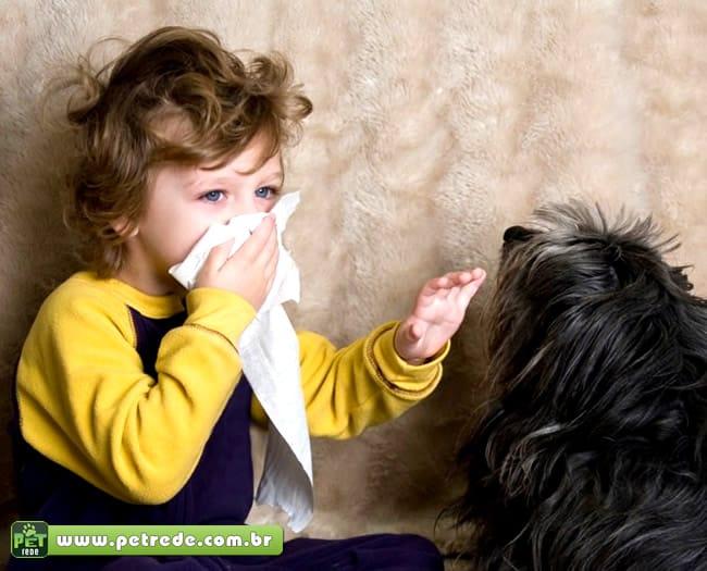 Especialistas dão dicas para alérgicos conviverem bem com os pets