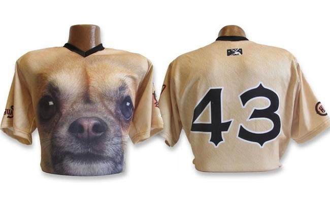 Raça de cachorro chihuahua estampa camisa de time de beisebol dos EUA