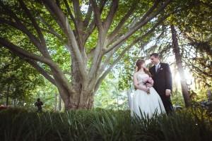 wedding-couple-by-tree