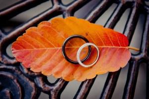 weddings-engagements-petruzzo-photography75