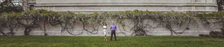 Panoramic image of an engaged couple in front of a wall of flowers in DC.