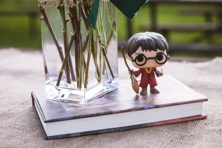 petruzzo-photography-harry-potter-elopement-13