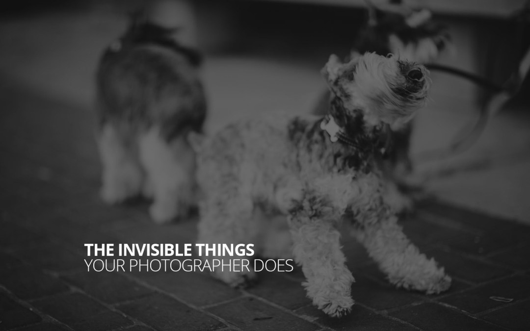 The Invisible Things Your Photographer Does