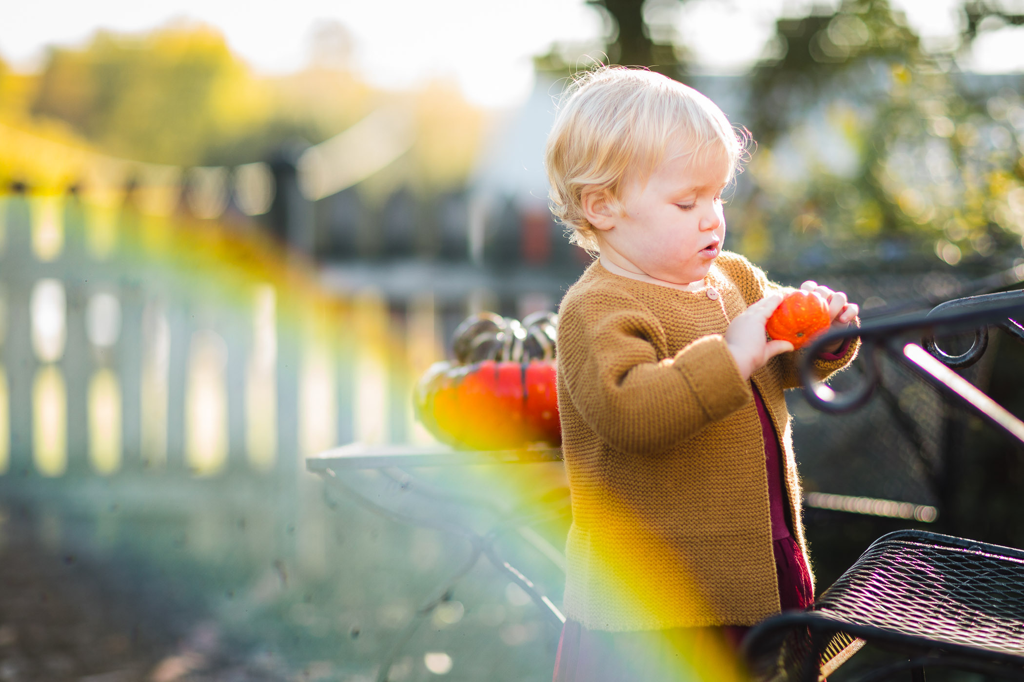A Colorful Two-Part Autumn Family Session from Felipe 22