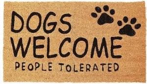 Top 5 Best Doormat for Dogs in 2021