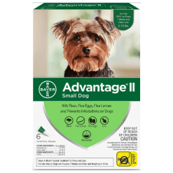 Advantage II Flea Treatment 3 to 10 lbs.