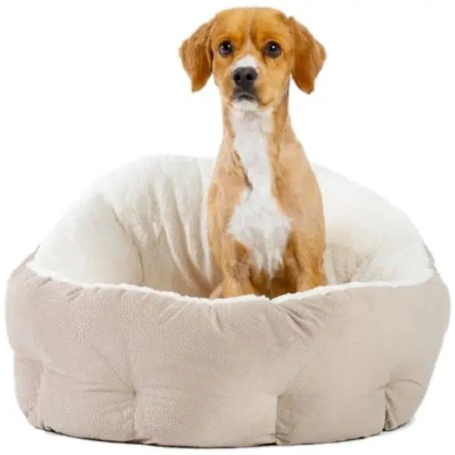 Best Friends by Sheri OrthoComfort Ilan Bolster Jumbo Pet Bed, Wheat.