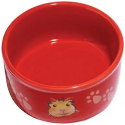 Kaytee Paw-Print PetWare Bowl, Guinea Pig, Colors Vary.