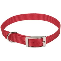 Coastal Single-Ply Dog Collar, Red.
