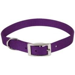 Coastal Single-Ply Dog Collar, Purple.