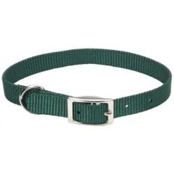 Coastal Single-Ply Dog Collar, Hunter Green.