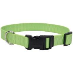 Coastal Adjustable Dog Collar with Plastic Buckle, Lime, 10- 14 in. SKU 7648464011