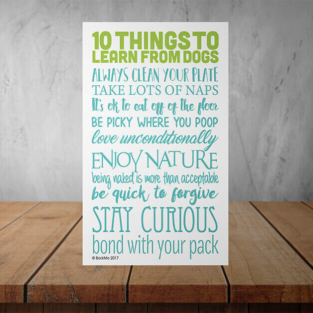 10 Things To Learn From Dogs