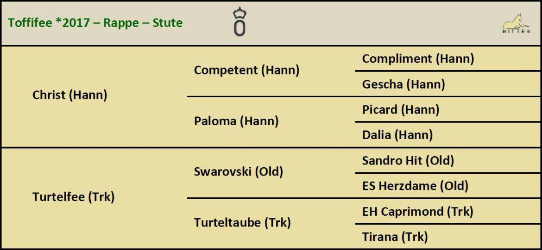 Pedigree TOFFIFEE Stute v. Christ x Swarovski, Oldenburger, geb. 2017