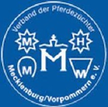 Bernay stellt in Mecklenburg vier gekörte Hengste und Siegerhengst