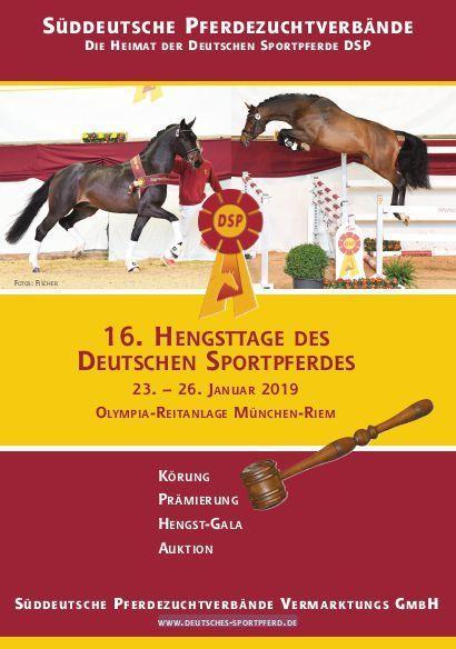Süddeutsche Körung 2019 – 80 Hengste treten an