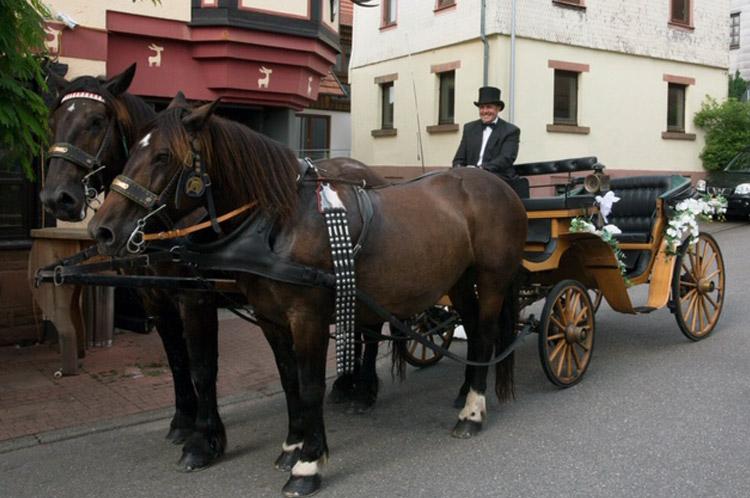 Schleich Elfen Hochzeitskutsche Kutsche In 97816 Lohr Am Main For