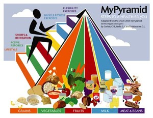 mypyramid_web