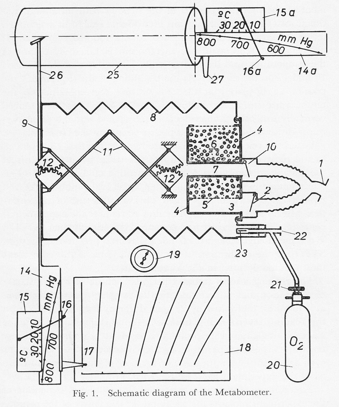 Fleisch Metabometer Schematic