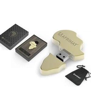 Afrique Memory Stick - 16GB - Gold