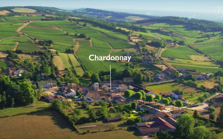 The Vineyard of Bourgogne seen from the sky – Mâconnais