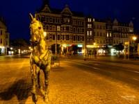 Blaue Stunde: Einer vom Pferd
