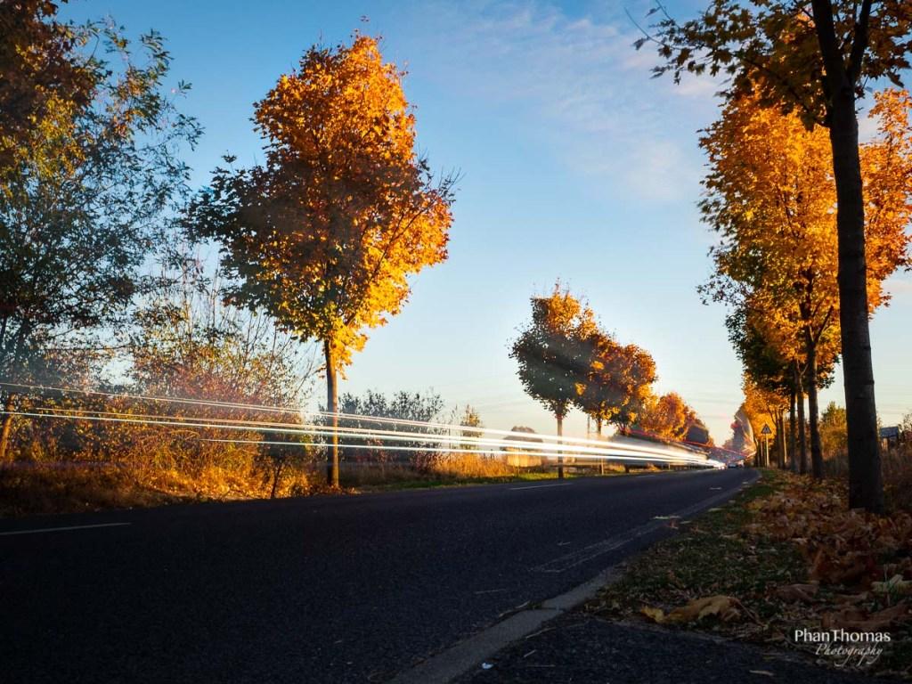 Herbstfotografie: Lichtmalerei