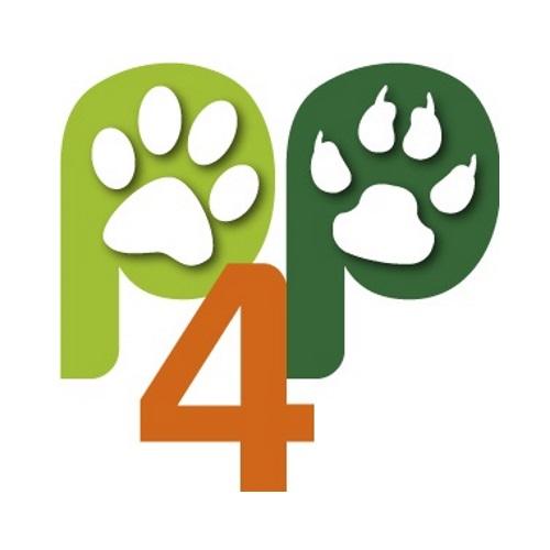 Broadline Spot On Katze