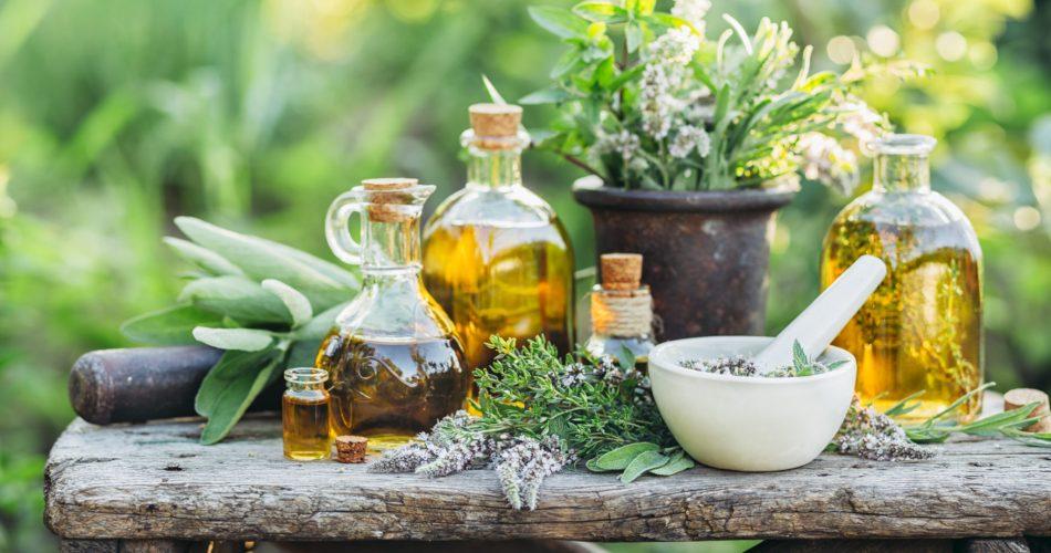 Best-herbal-medicine-books