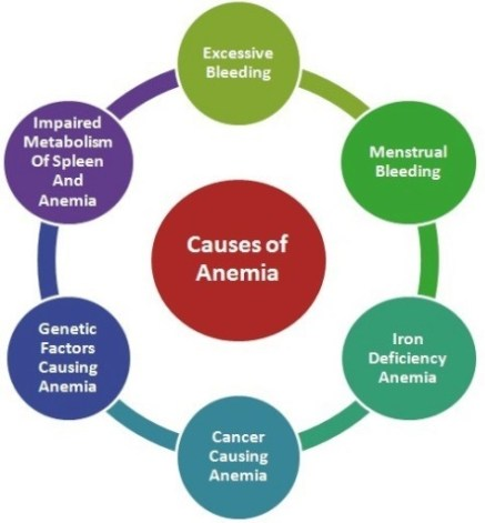 Causes for anemia