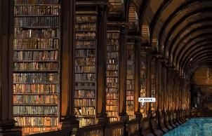 """Library // """"ça monte"""" -- Medium 100x70 259€ // Large 140x90 429€"""