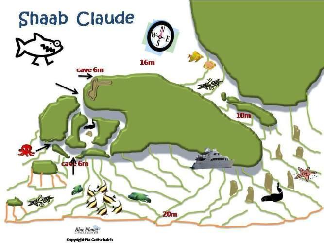 Shaab Claudio