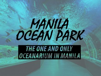 Manila ocean park manila philippines aquarium oceanarium marine