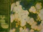 Dappled Shutter Shade watercolour $790