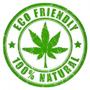 Hemp 100% Natural