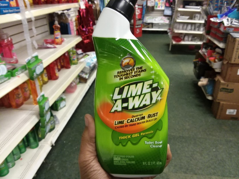cleaning products at dollar tree
