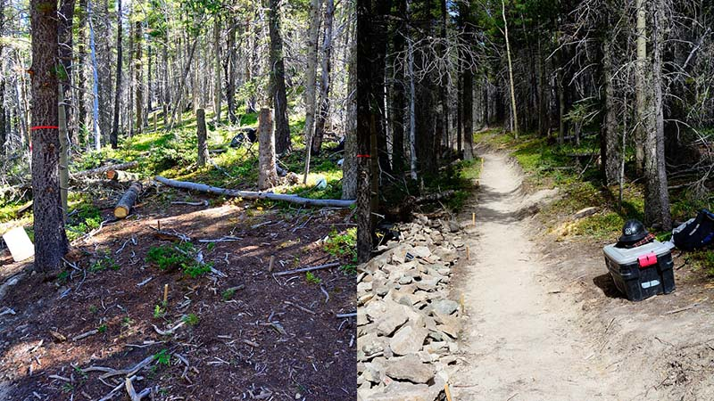 trail_comparison