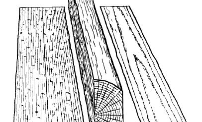 """Plain quarter sawn"". Licensed under Public domain viaWikimedia Commons."