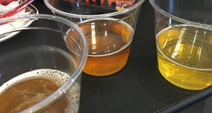 beer-and-comfort-food