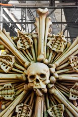 Man-Made – Mardi Gras skull and bones