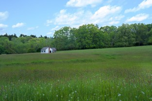 Man-made – tiny white cottage in large field of tall grass near woods and sky