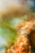 Fantasy – pareidolia pig emerges from smoke
