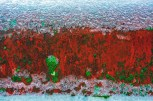 Graphic – ice glaze and green lichen on red surface