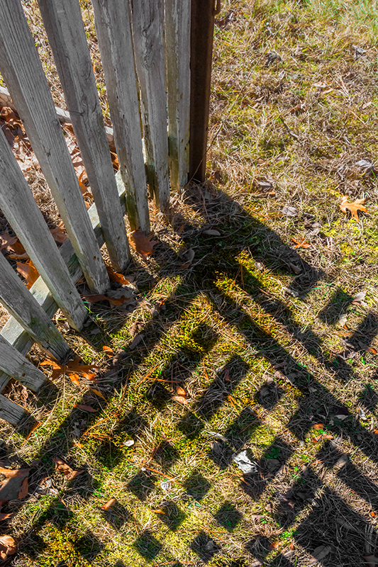 Graphic – mirrored sunlight obscures the shadow of a picket fence