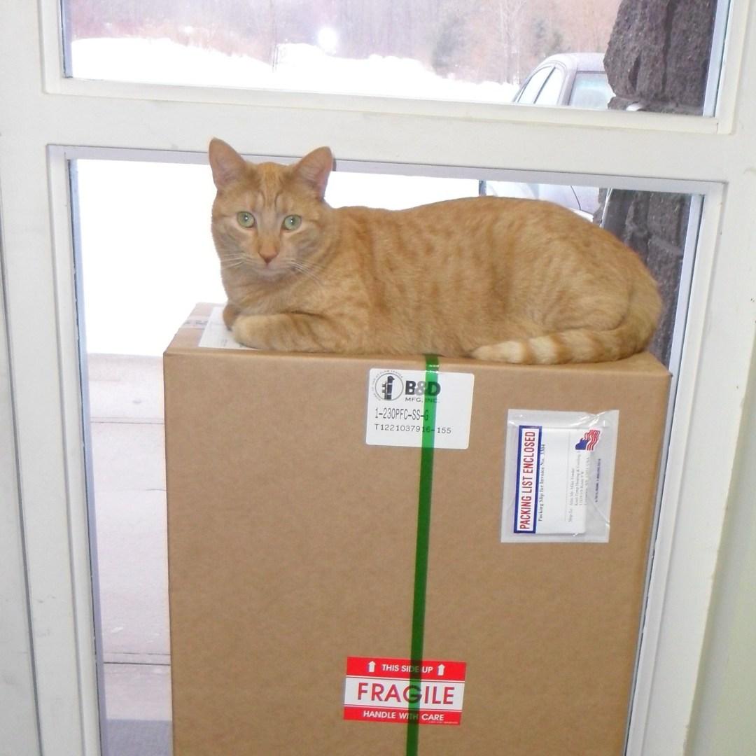 Box Perch