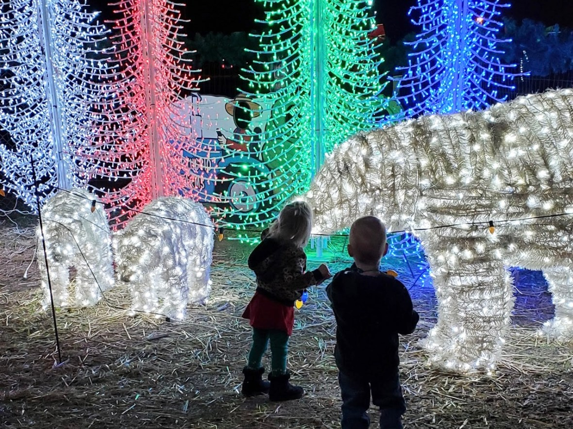 The Ultimate List of 2020 Holiday Events in Phoenix   Phoenix With