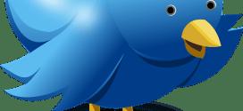 Twitter : 280 caractères, découvrez comment 12 utilisateurs le perçoivent